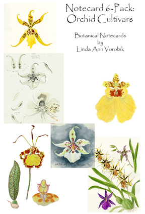 Cultivated Orchids: Oncidiinae