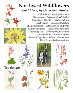Vorobik Northwest Wildflowers Card Pack